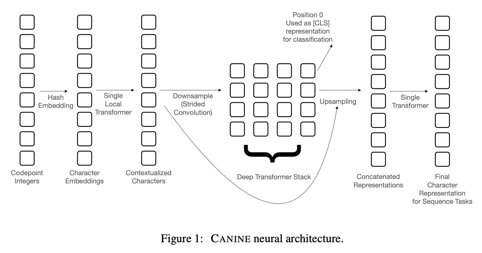 canine-1